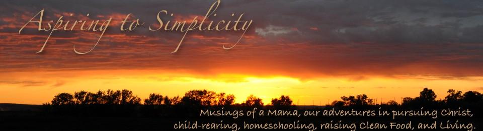 Aspiring to Simplicity
